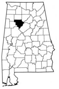 Map of Walker County